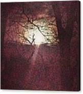 Antique Moon Canvas Print