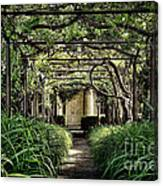 Antique Pergola Arbor Canvas Print