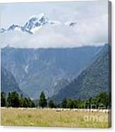 Aoraki Mt Cook Highest Peak Of Southern Alps Nz Canvas Print