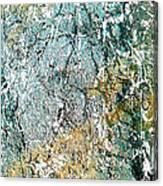 Ap 2 Canvas Print