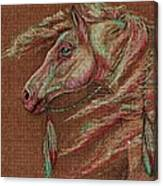 Apache Spirit Canvas Print