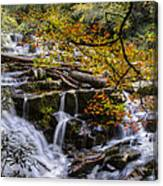 Appalachian Mountain Waterfall Canvas Print