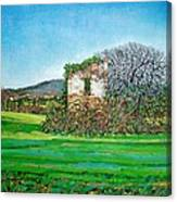 Appia Antica, House, 2008 Canvas Print