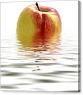 Apple Afloat Canvas Print