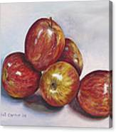 Apple Assortment Canvas Print