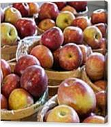 Apple Baskets Canvas Print