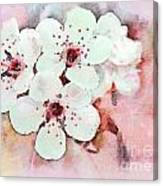 Apple Blossoms Pink - Digital Paint Canvas Print