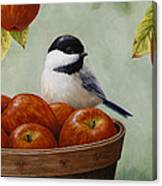 Apple Chickadee Greeting Card 1 Canvas Print