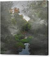 Apple Creek  Canvas Print