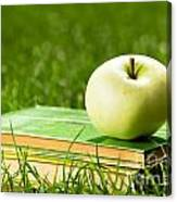 Apple On Pile Of Books On Grass Canvas Print