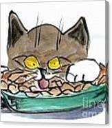 Apple Pie Vs. Hungary Cat Canvas Print