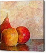 Apples And A Pear Canvas Print