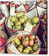 Apples And Pears For Sale Canvas Print