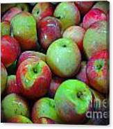 Apples Apples And More Apples Canvas Print