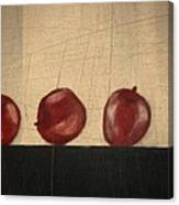 Apples for Gayle Canvas Print