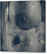 Apples In Glass Canvas Print