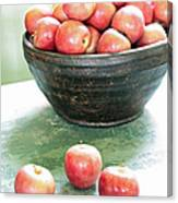 Apples On The Table  Canvas Print