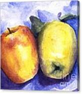 Apples Paired Canvas Print