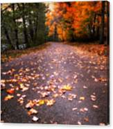 Approaching Autumn Canvas Print