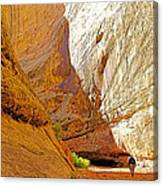 Approaching The Shadow In Grand Wash In Capitol Reef National Park-utah Canvas Print
