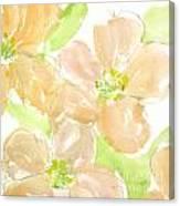 Apricot Quince Canvas Print