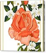 Apricot Rose for Mother's Day Canvas Print