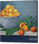 Apricots And Peaches Canvas Print