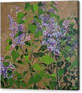 April Lilacs Canvas Print