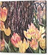 April On Pearl St Canvas Print