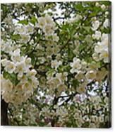 April's Bouquet Canvas Print