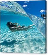 Aqua Dive Canvas Print
