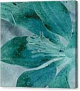 Aqualily Canvas Print