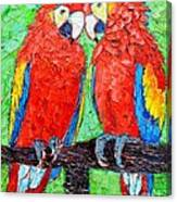 Ara Love A Moment Of Tenderness Between Two Scarlet Macaw Parrots Canvas Print