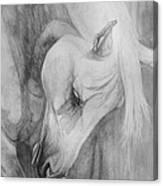 Arabian Gentleness Canvas Print