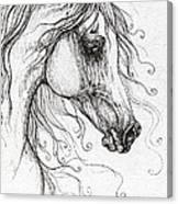 Arabian Horse Drawing 48 Canvas Print