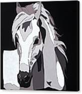 Arabian Horse With Hidden Picture Canvas Print