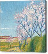 Arbes En Fleurs A L'entree De Cailhavel Canvas Print