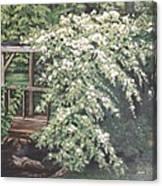 Arbor Passage Canvas Print