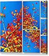 Arbre Eclat Canvas Print