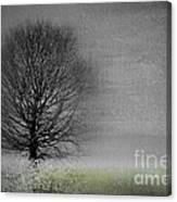 Arbrensens - V06gr Canvas Print