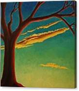 Arbutus Bliss Canvas Print