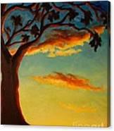 Arbutus Sunrise Canvas Print