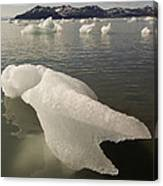 Arctic Ice Floe Canvas Print