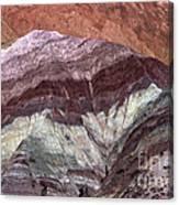 Argentine Rock Art Canvas Print