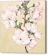 Ariake - Daybreak - Vintage Japanese Watercolor Canvas Print