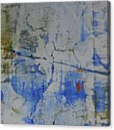Ariel View Canvas Print