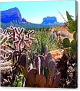 Arizona Bell Rock Valley N4 Canvas Print
