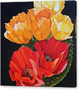 Arizona Blossoms - Prickly Pear Canvas Print