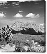 Arizona Desert #1 Canvas Print