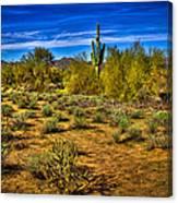 Arizona Landscape Iv Canvas Print